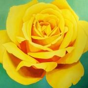 rose-013